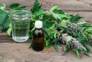 علاج الضغط المنخفض بالاعشاب والاغذية