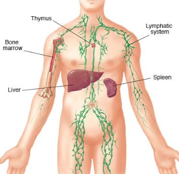 عودة سرطان الغدد اللمفاوية
