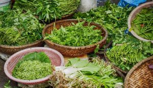 علاج البروستاتا بالاعشاب جابر القحطاني